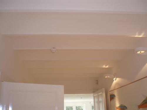 Spuitwerk gewelfd plafond
